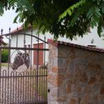 vstupní brána - hlava koně