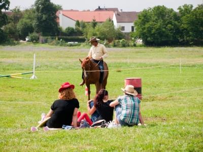 soutěže na koních